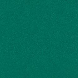 Oralite 5600 Reflective Green 060