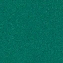 Oralite-5700-Reflective-Green-060
